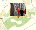 Салтовский лес