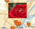 Где находятся брачные агентства в Волгограде?