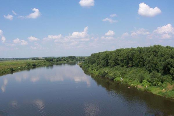 Где организовать досуг на природе в Ростове-на-Дону?