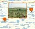 Ильмено-Бугровой природный заказник