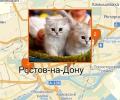 Где проводят выставки животных в Ростове-на-Дону?