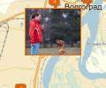 Где осуществляют дрессировку собак в Волгограде?