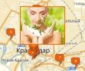 Где купить товары для здоровья в Краснодаре?