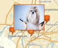 Где в Краснодаре есть парикмахерские для собак и кошек?