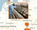 Где расположены крупные птицефабрики Краснодара?