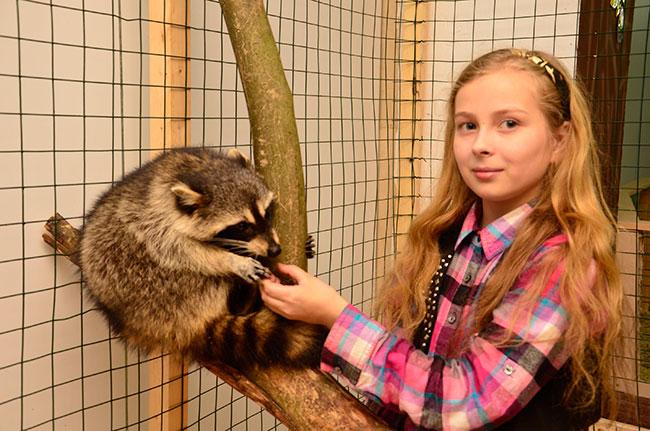 Какие контактные зоопарки действуют в Краснодаре?