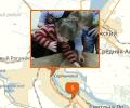 Какие контактные зоопарки действуют в Волгограде?