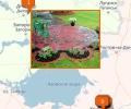 Где оказывают услуги по ландшафтному дизайну в Краснодаре?