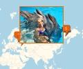Где поплавать с дельфинами в Симферополе?
