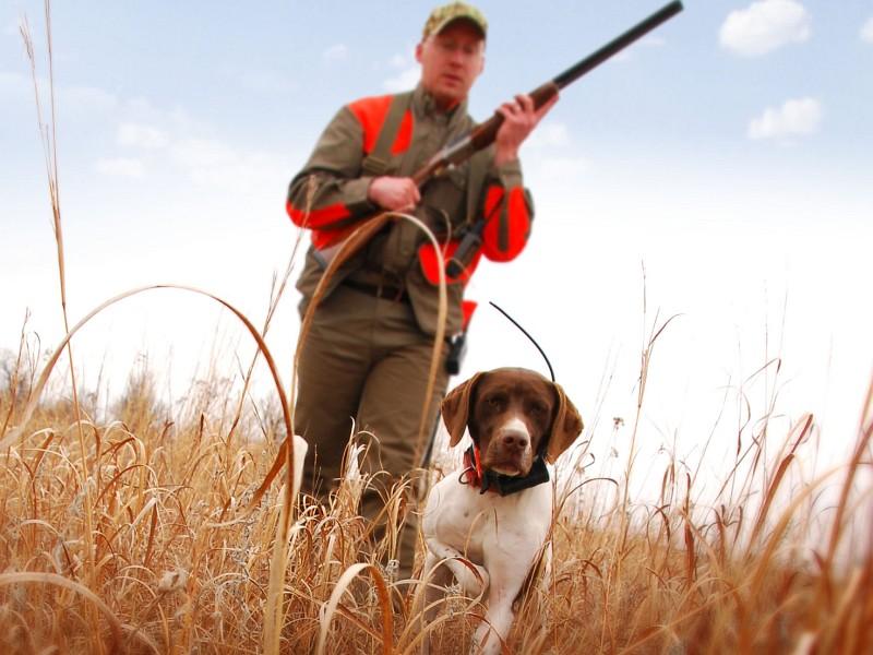 Охота в Краснодаре - Охотничьи базы Краснодара